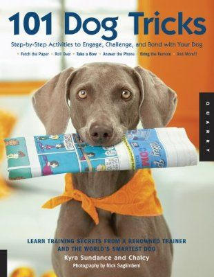 101 Dog Tricks Step By Step Activities To Engage Challenge And