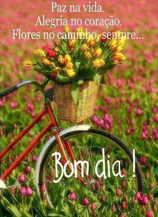 Bom Dia Com Imagens Flores Passeios De Bicicleta Tulipas