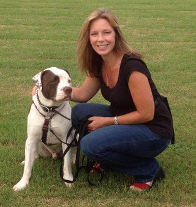 Dog Training Las Vegas Las Vegas Dog Trainers Are Now Offering