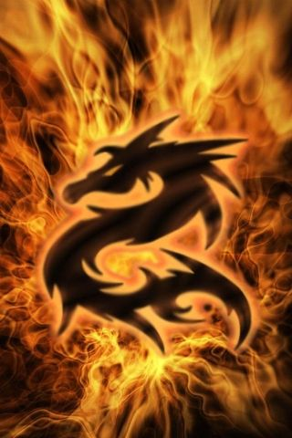 Fire Dragon Iphone Wallpaper Dragon Pictures Dragon Images