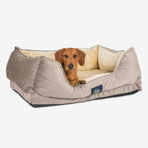 Serta Cuddler Dog Bed Buy It Now Http Amzn To 2b1uf4z Dog Bed Buy Orthopedic Dog Bed Orthopedic Pet Bed
