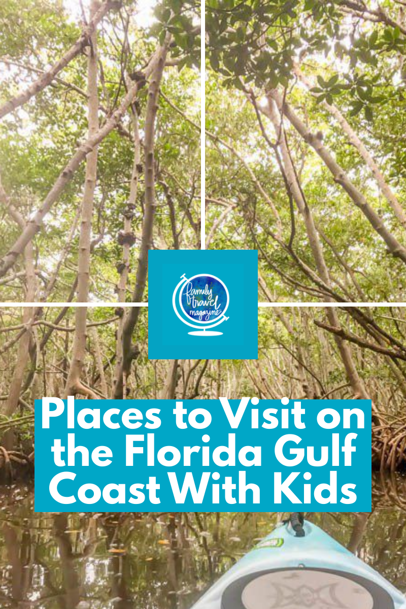 Places To Visit On The Florida Gulf Coast With Kids Gulf Coast Florida Places To Visit Best Beaches To Visit