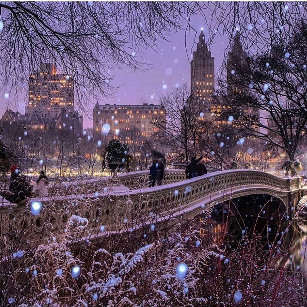 Twitter In 2020 New York Christmas Scenery City Photography