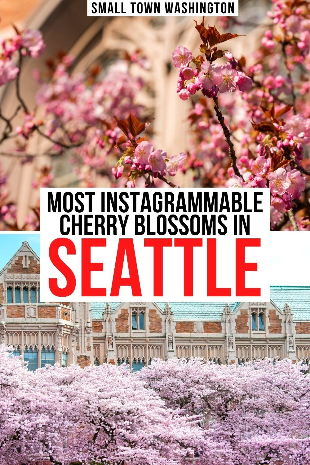 9 Best Places To Find Cherry Blossoms In Seattle Small Town Washington In 2021 United States Travel Destinations Usa Travel Destinations Pacific Northwest Travel