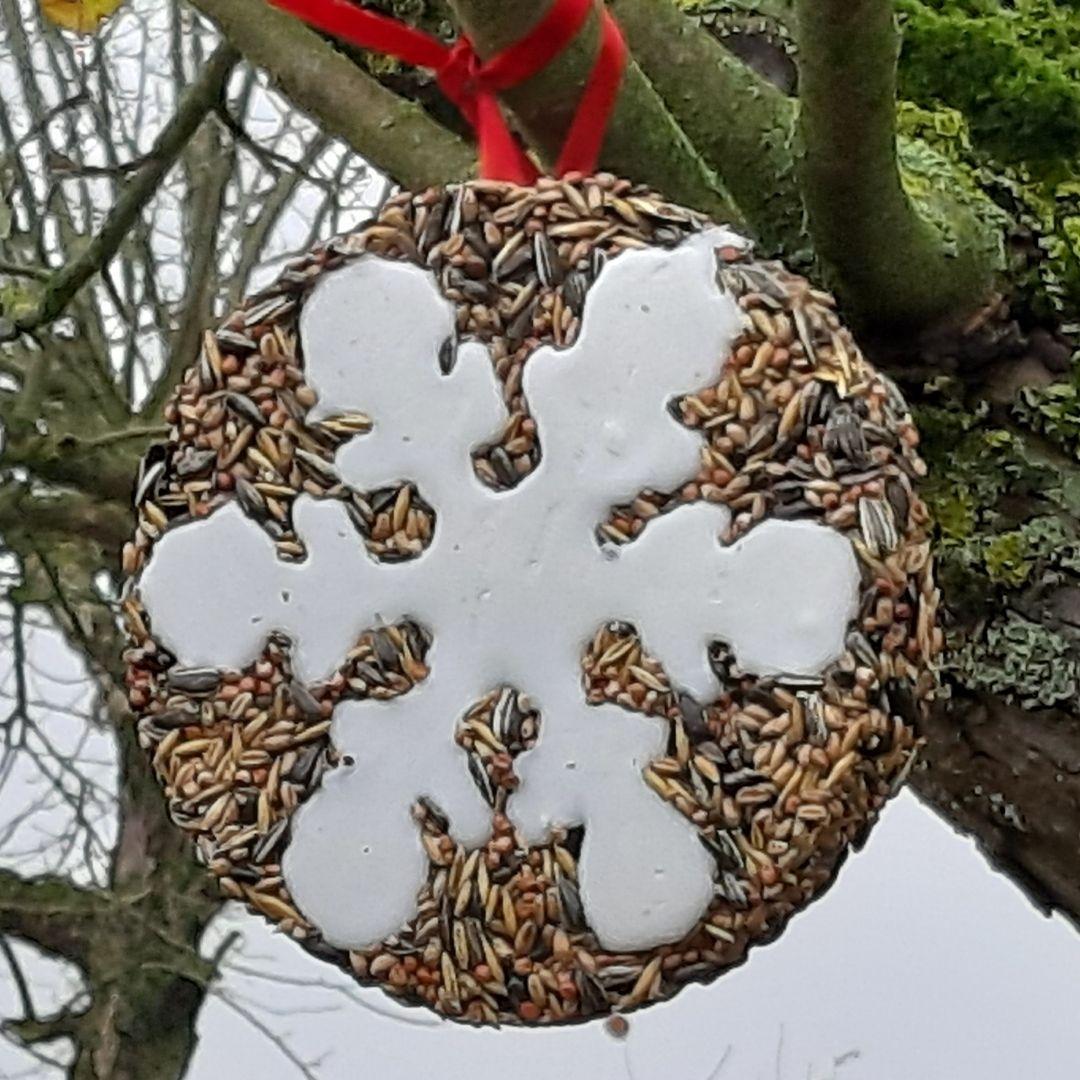 Follow us For More Vogelfutter damit noch mehr den Garten von Schädlingen befreien und ihr Gezwitscher nicht verstummt