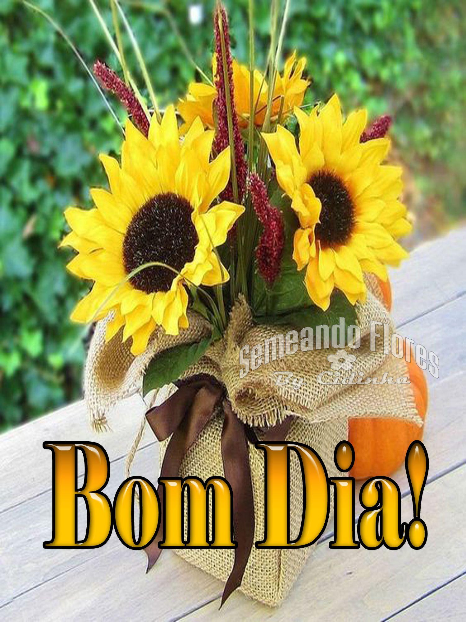 Pin De Cidinha Nobrega Em Semeando Flores 6 Mensagens De Bom Dia