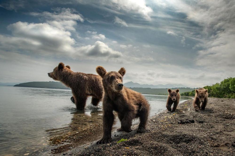 Amazing Photos Of The World - We Need Fun