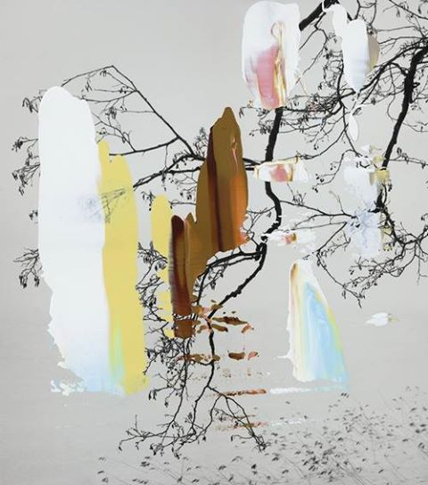 Nanna Hänninen, 'Painted Tree Series' (2012)