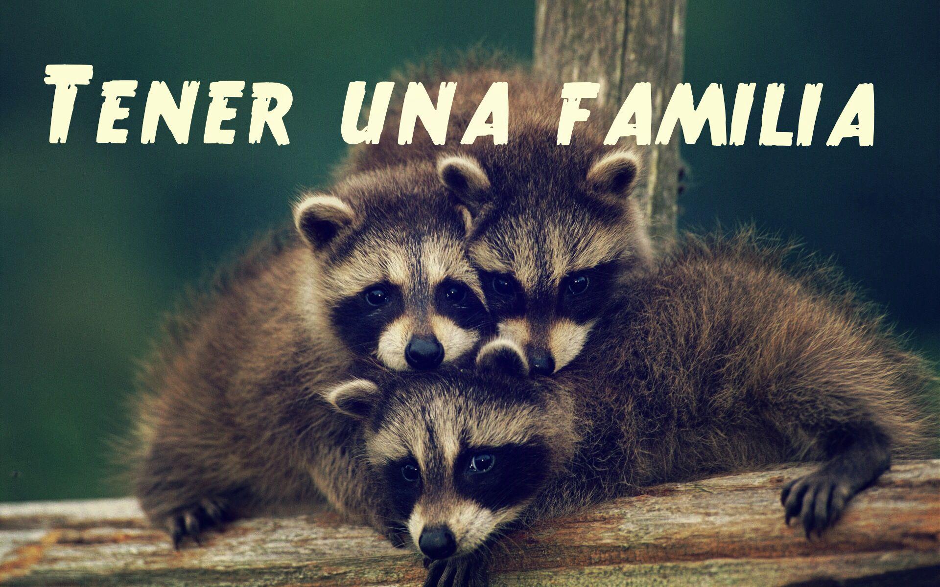 Tener una familia