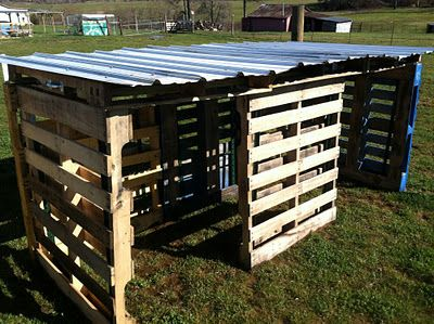 pallet hog house but could be used for many small animals