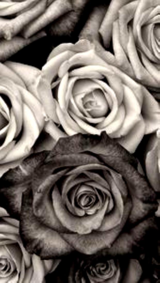 Fond D Ecran Iphone Decran Fond Iphone Decran Fond Iphone Fondecraniphonemarbre Fo En 2020 Papier Peint Rose Fond D Ecran Noir Et Blanc Ecran De Verrouillage
