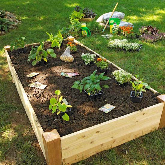 Creating Our First Vegetable Garden Advice Please: Grow A Vegetable Garden In Raised Beds