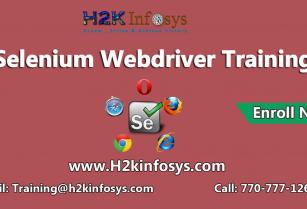 Selinium Webdriver JUNIT Testing Online Training Course