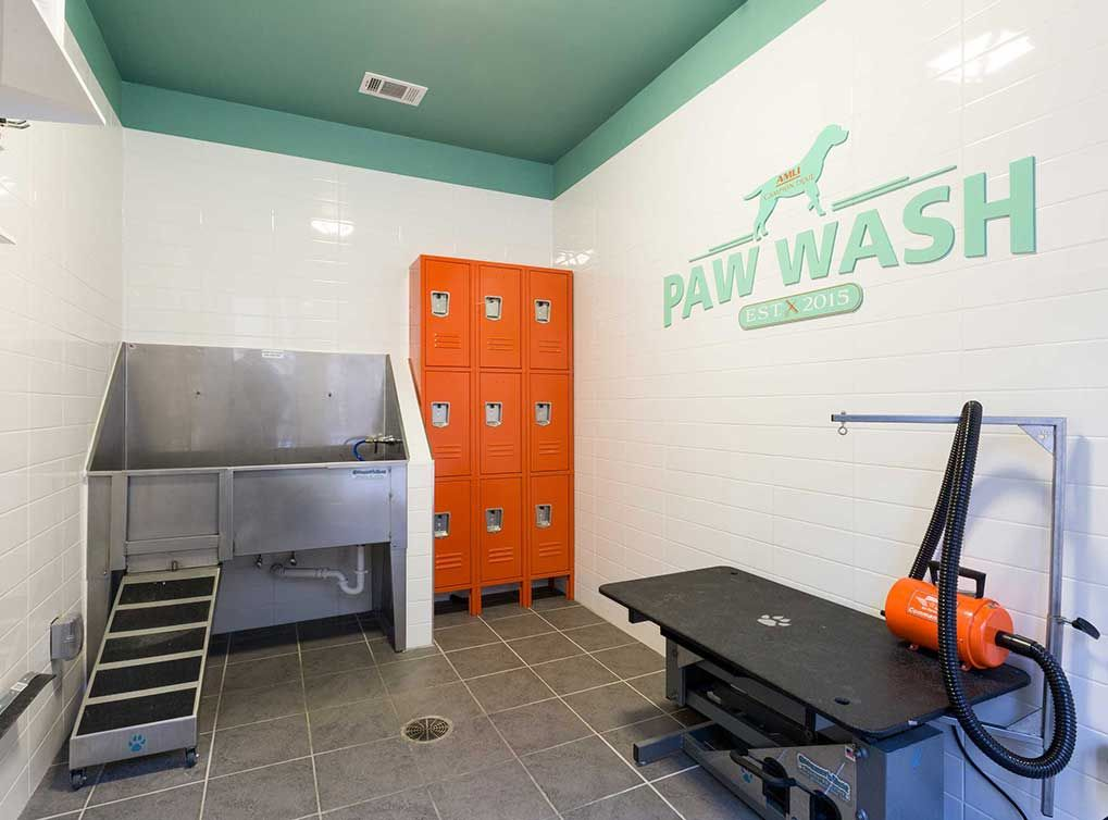 Give Your Pets A Bath At The Paw Wash At Amli Campion Trail