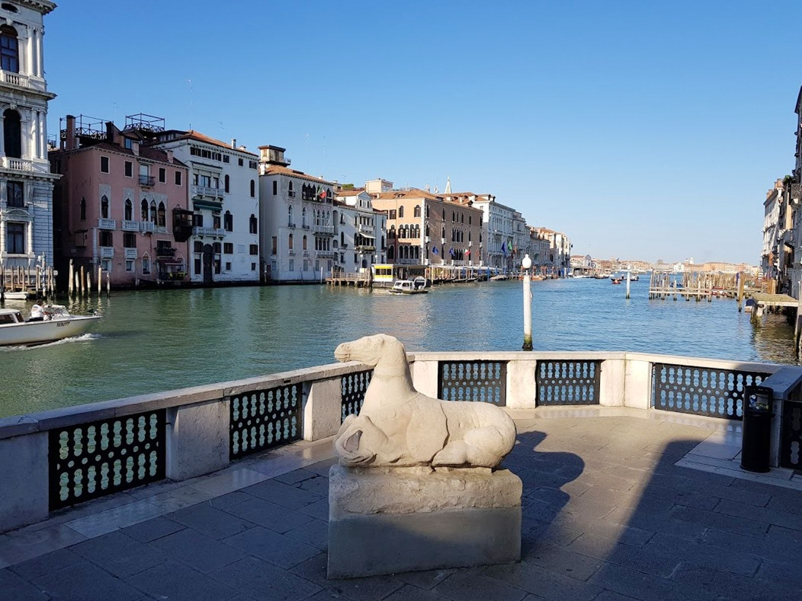 The Museums Of Venice Peggy Guggenheim Collection Peggy Guggenheim Guggenheim Venice