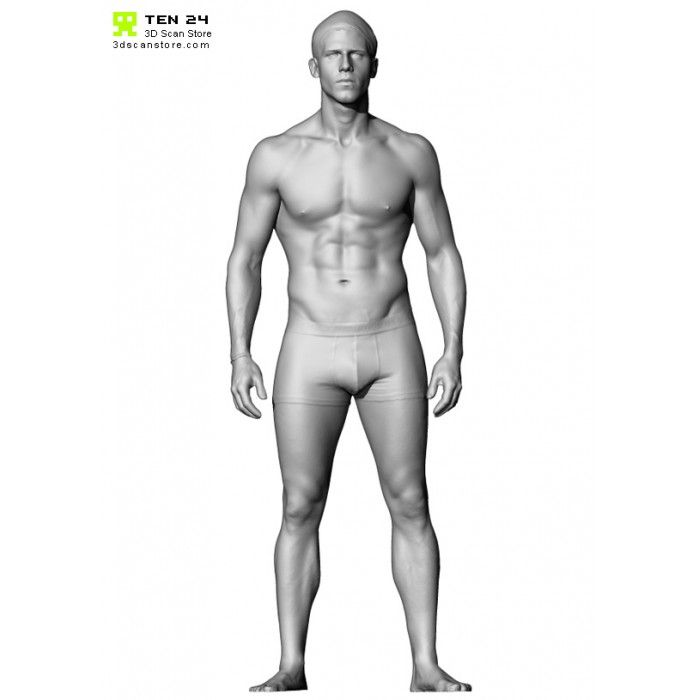 Male Anatomy Bundle 01 Anatomy Man Anatomy Anatomy Reference