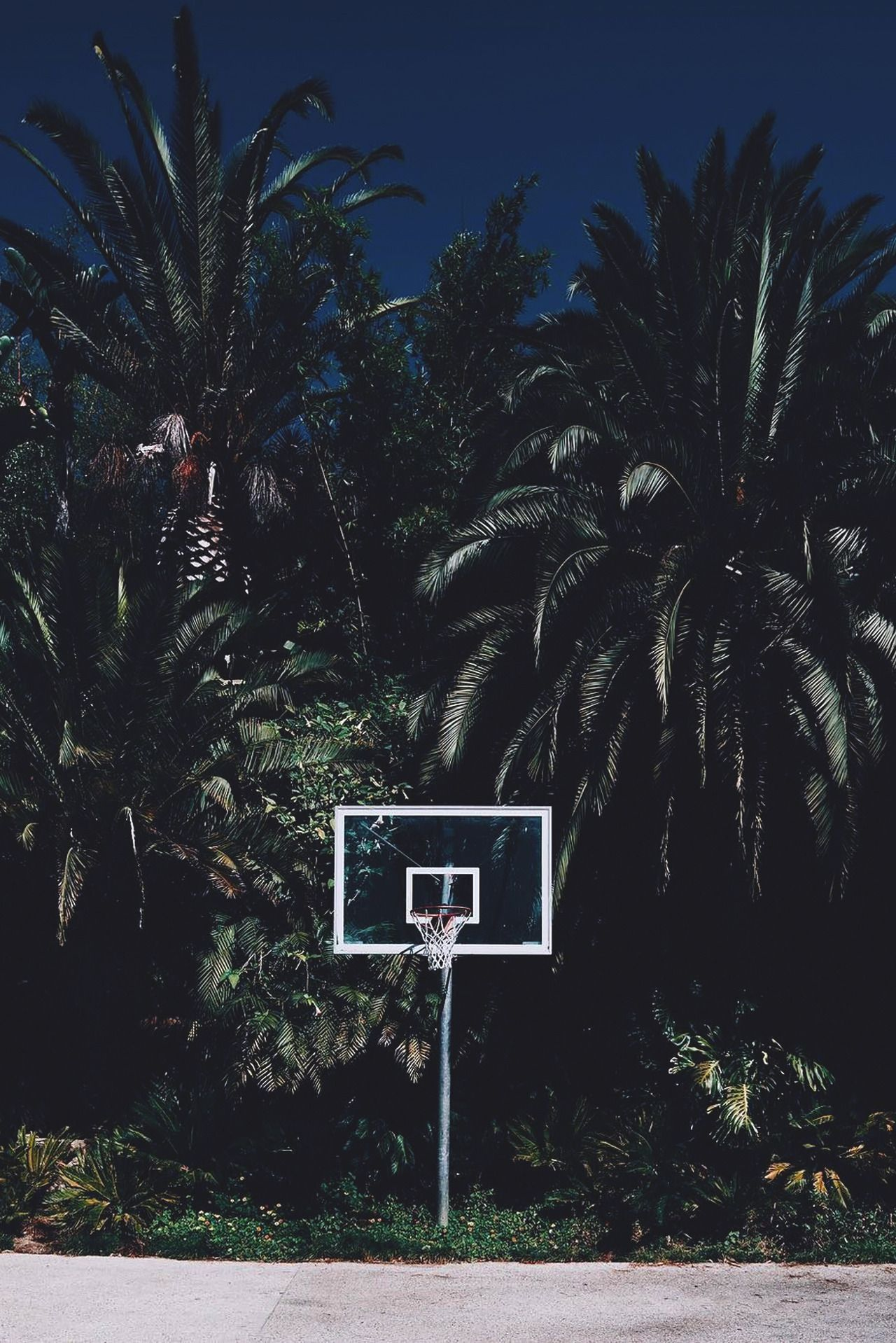Pin On Beach Basketball