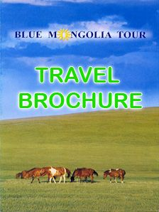 The Priority Of Blue Mongolia Tour Is To Be Professional Travel