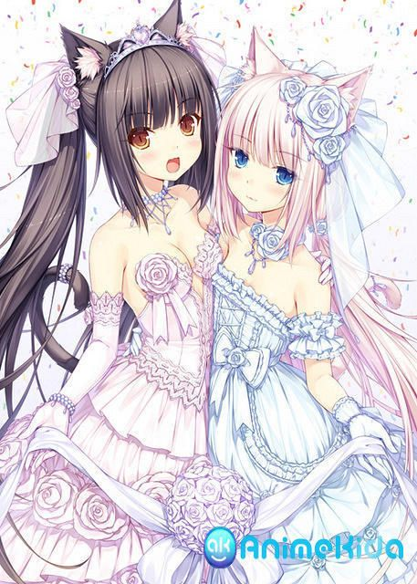 In This Anime Wallpaper We See Two Cute Nekomimi Sisters I Love Their Wedding Dresses