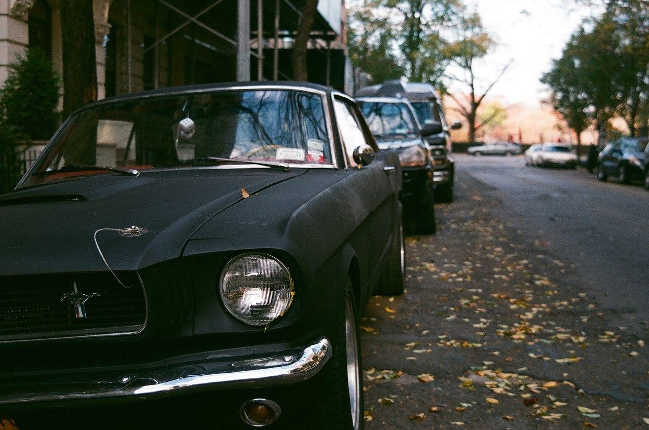 Matte Black Mustang By Tracy Allen Bailey Jr Cars Moto