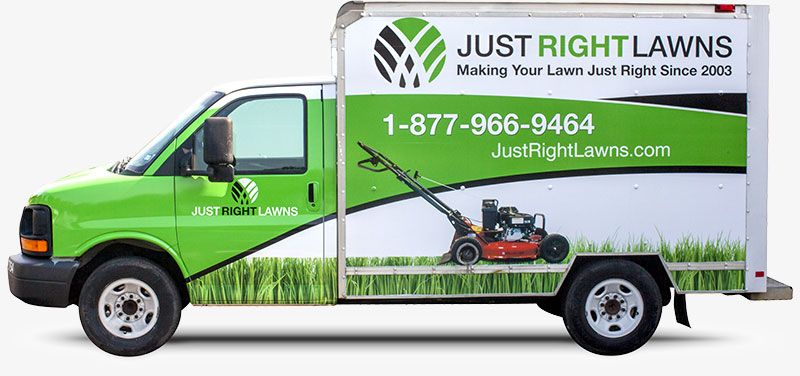 About Us Just Right Lawns Lawn care companies, This is