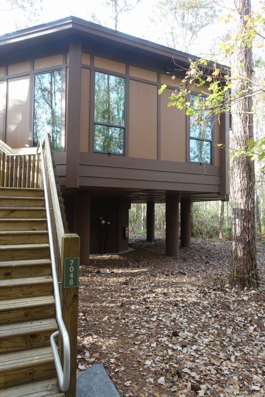 Updated Review of Disney s Treehouse Villas yourfirstvisit
