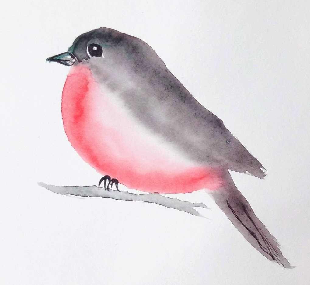 Un Oiseau A L Aquarelle En 3 Minutes Chrono Aquarelle Facile
