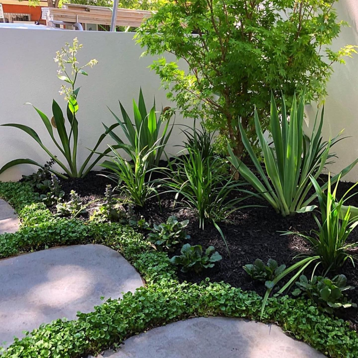 Love This After Before From Fcglandscaping How Would You Use Our Plant Tiles Of Ground Cover For An Instant Garden M Garden Makeover Plants Garden Design