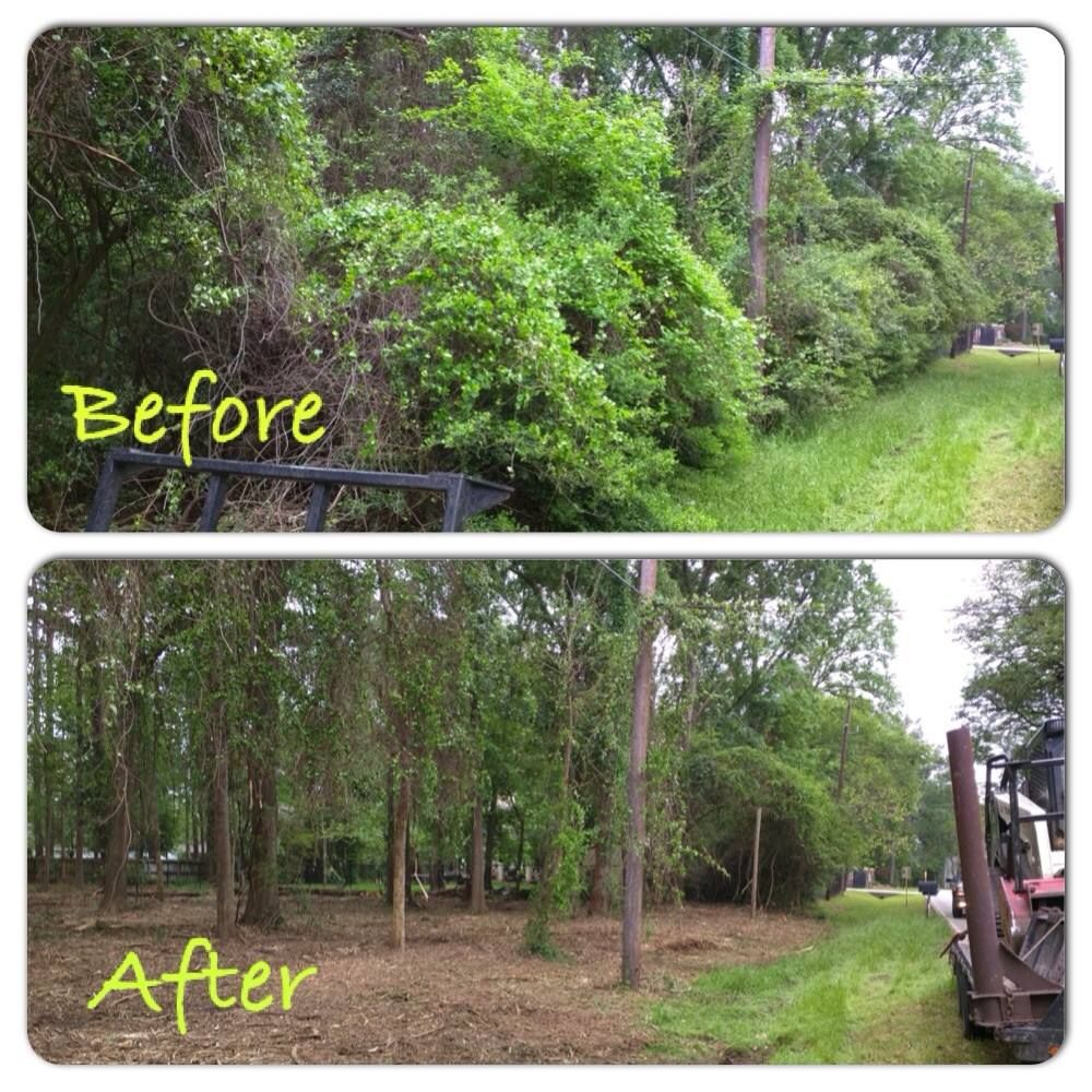 Full Service Land Clearing Company Based Out Of Livingston
