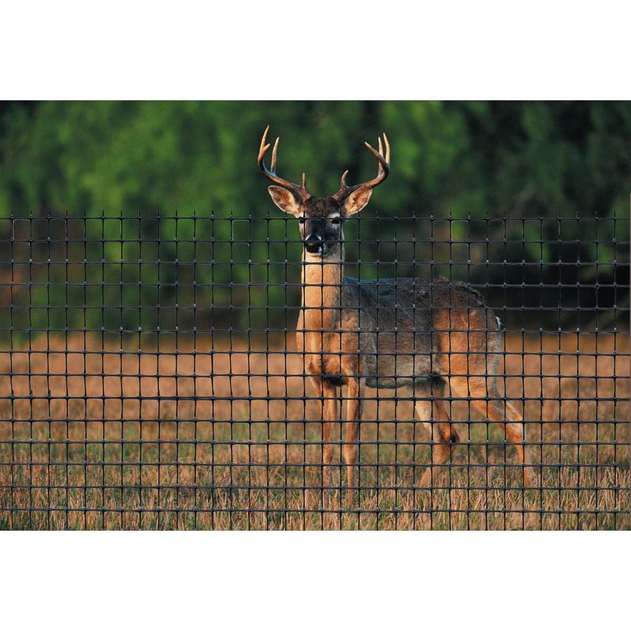 Product Image 2 Deer Fence Cattle Panels Deer Netting