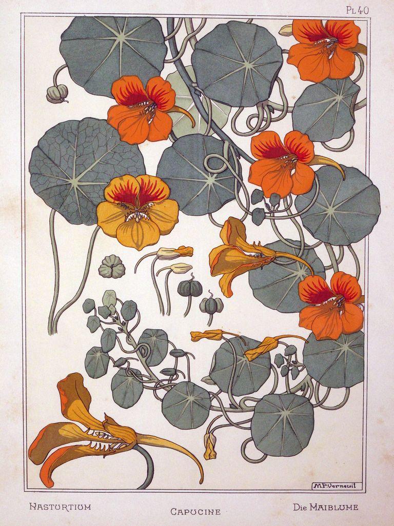 Art Nouveau Flower Tattoo Gis: Art Nouveau Flowers, Art Nouveau