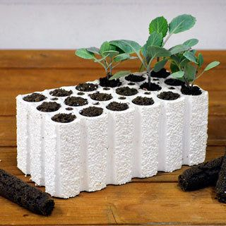 park starts is a seed starting kit with polystyrene blocks on best japanese garden for your home exterior ideas might possibly be the easy answer id=16468