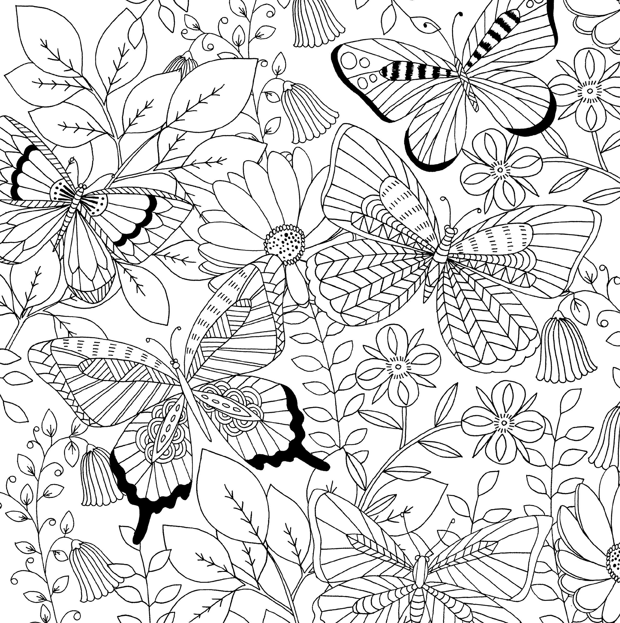 Follow Your Dreams Adult Coloring Book 31 Stress Relieving Designs Artists