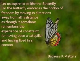 Aspire to be the butterfly...