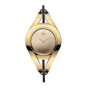 98e2ca2b484 Dámské hodinky Calvin Klein K1B33609
