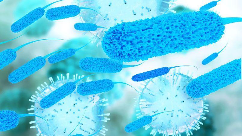 Quand les bactéries contrôlent l'appétit