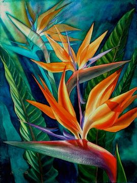 Transpa Watercolor Bird Of Paradise Work Painting Silk Plant