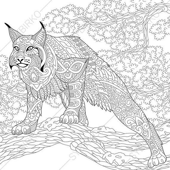 wildcat lynx bobcat caracal coloring page by coloringpageexpress