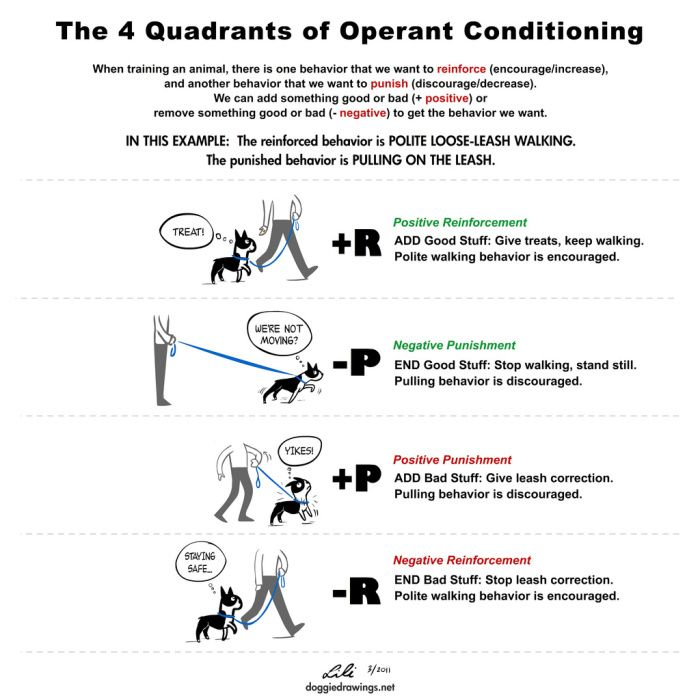 Plenty In Life Is Free Kathy Sdao Operant Conditioning Dog