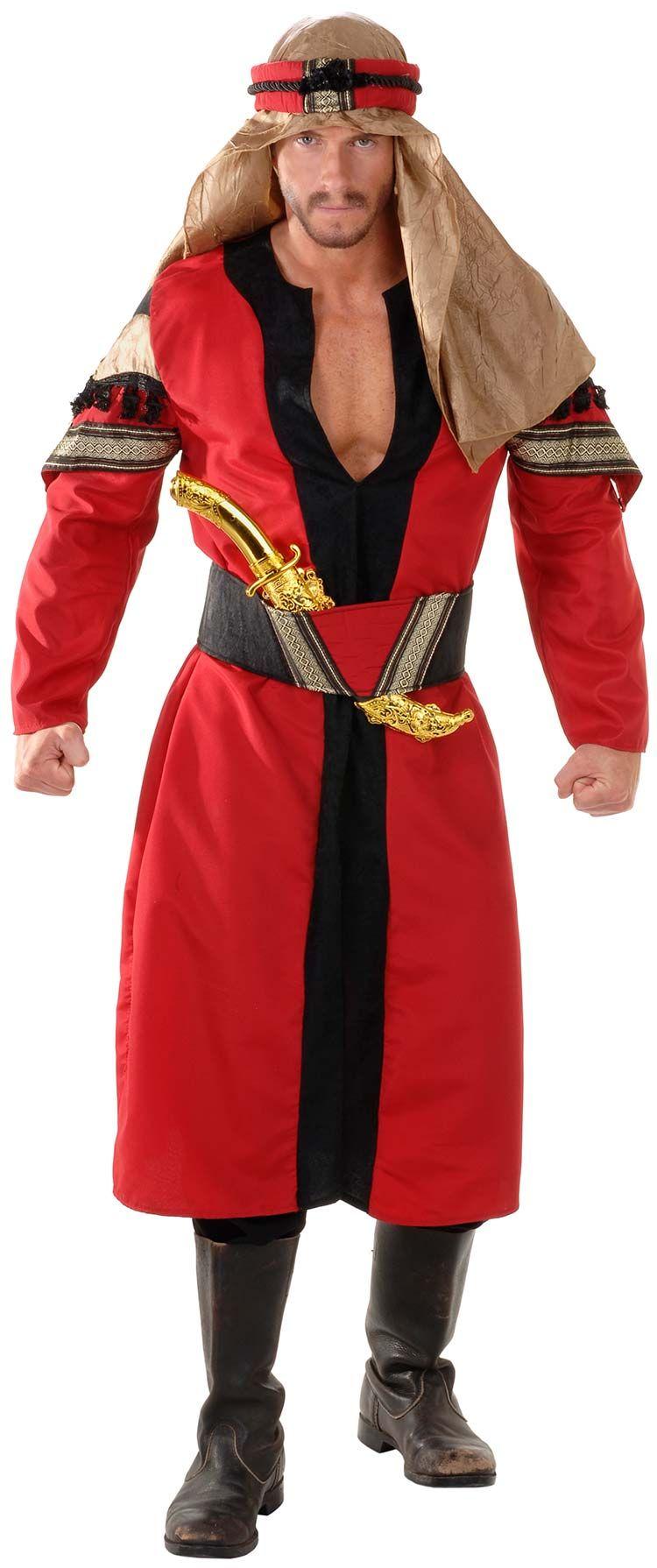 11049M-Deluxe-Desert-Prince-Arabian-Costume-large.jpg 750×1790 pixels  sc 1 st  Pinterest & 11049M-Deluxe-Desert-Prince-Arabian-Costume-large.jpg 750×1790 ...