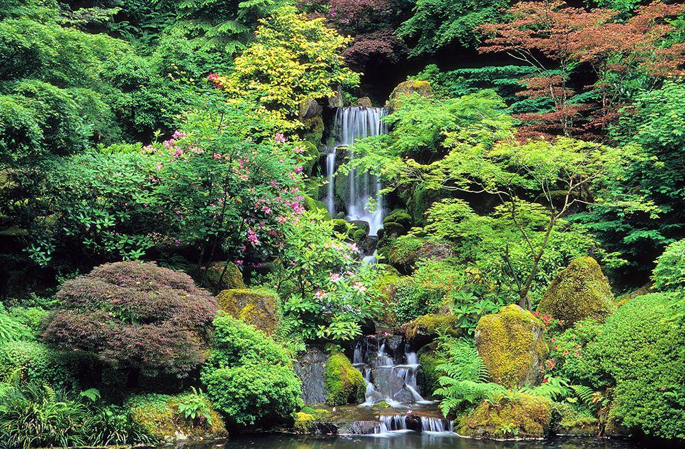 Summer Gallery Portland Japanese Garden Portland