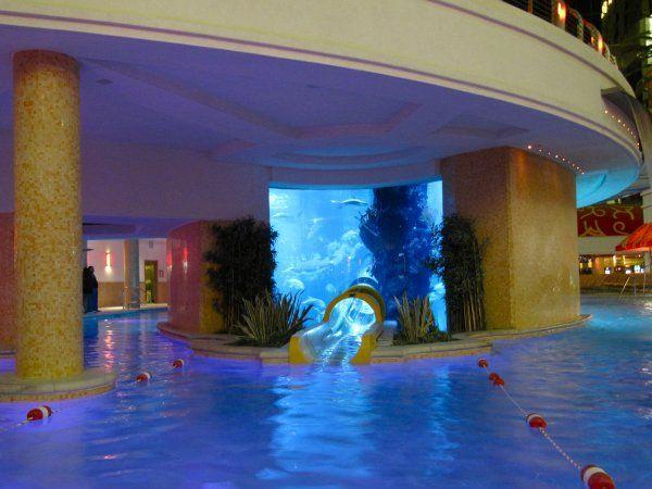 Golden Nugget Aquarium Water Slide Mind Body Pinterest Water Slides Golden Nugget And
