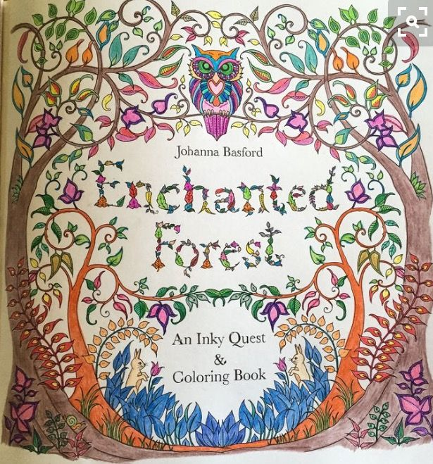 Johanna Basford Enchanted Forest Colouring Book First Page Coloured By Judy Boechler