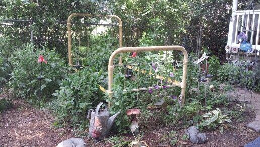 Garden Bed