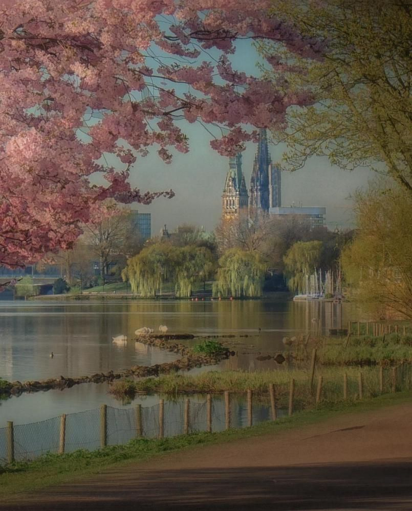 The Alster Hamburg By Jhanna Places To Visit Pictures Photo