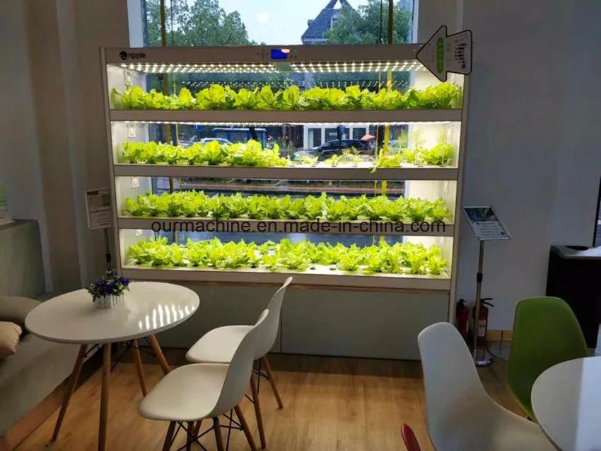 Vertical Aeroponics System Home Tower Gardening Indoor