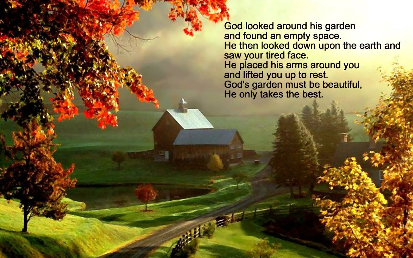 god looked around his garden and found an empty space he