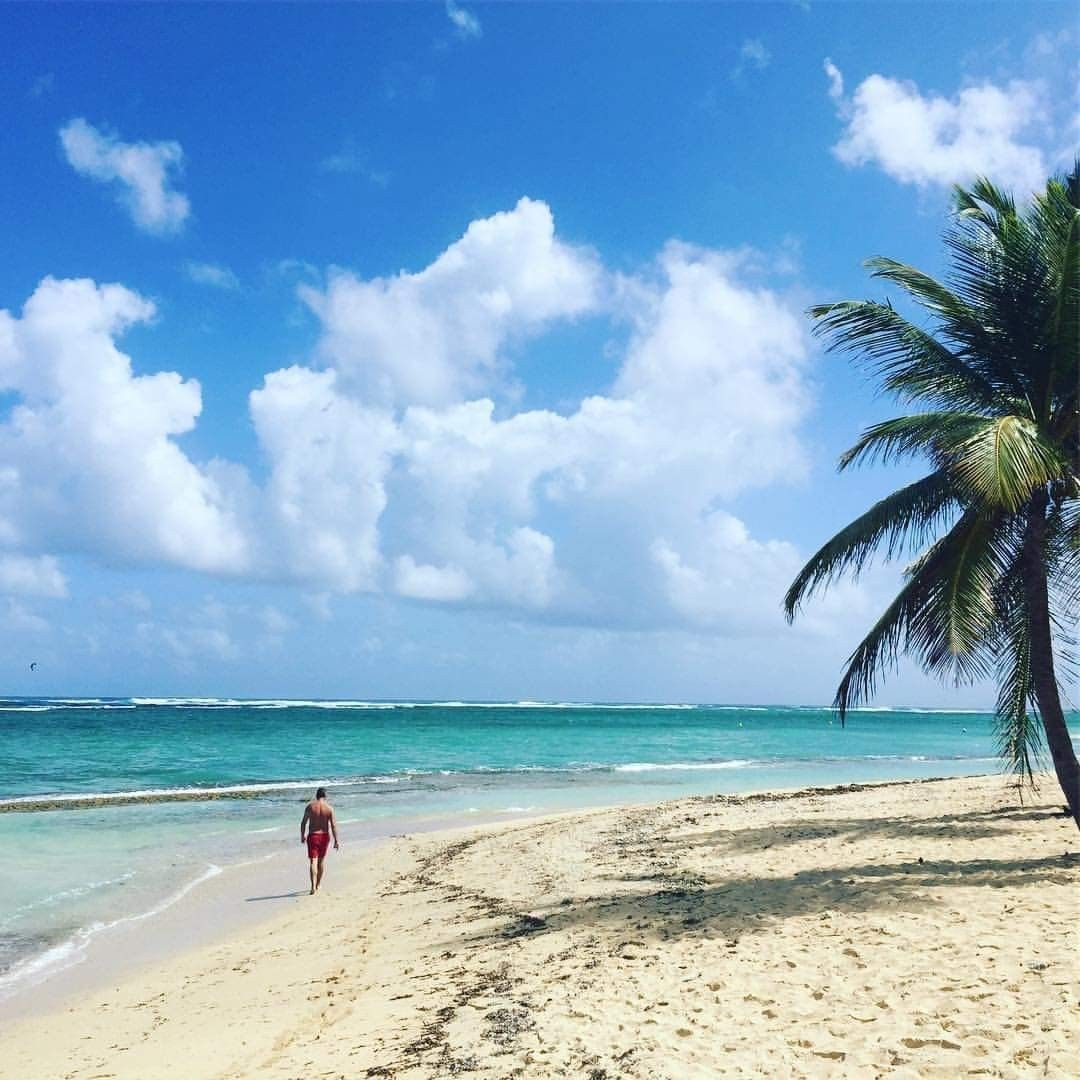 Guadeloupe Beach: You Could Also Walk On This #beach Too! Visit #Guadeloupe