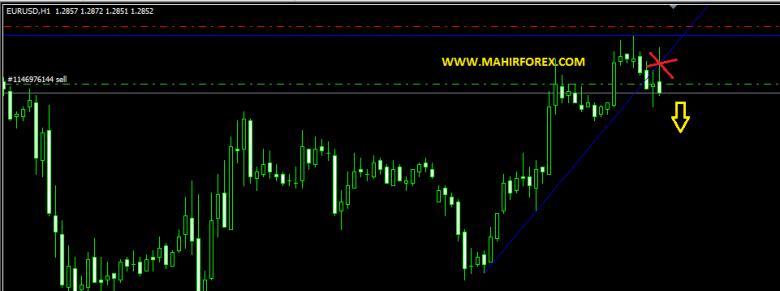 signal forex gratis 2013