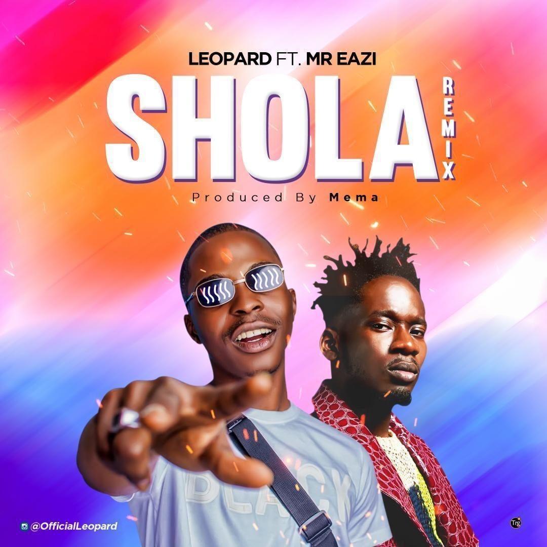 DOWNLOAD MP3 Mr Eazi X Leopard Shola (Remix